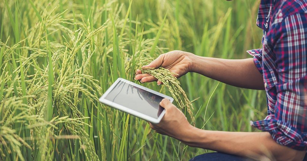 Thay đổi cách tiếp nhận thông tin của nông dân